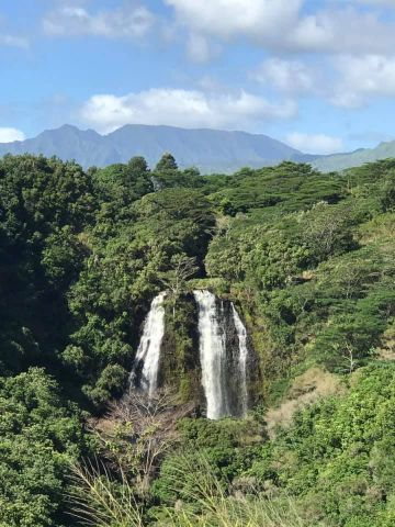 KAUAI EXPERIENCES: THINGS TO DO, SEE AND EAT!!